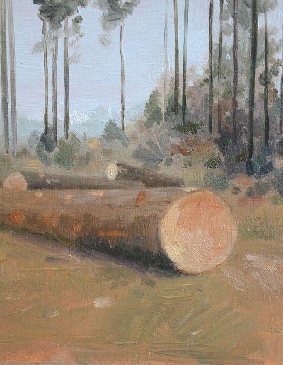 Dégâts de forêt n°7, 2014.