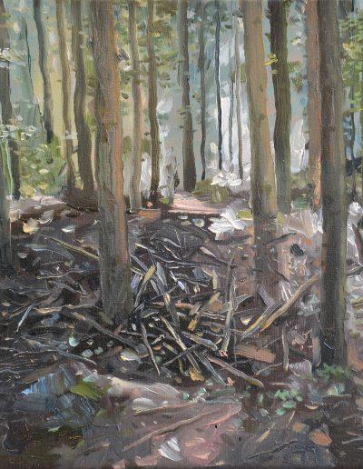 Dégâts de forêt n°1, 2013.