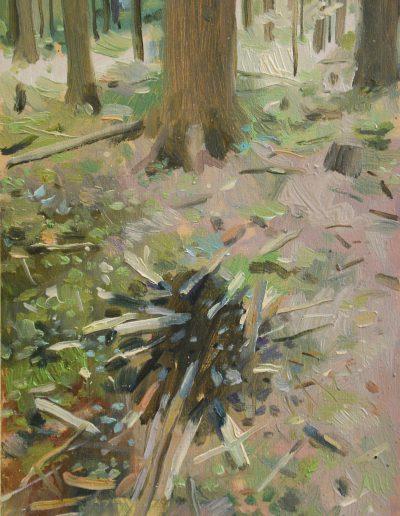 Dégâts de forêt n°4, 2013.