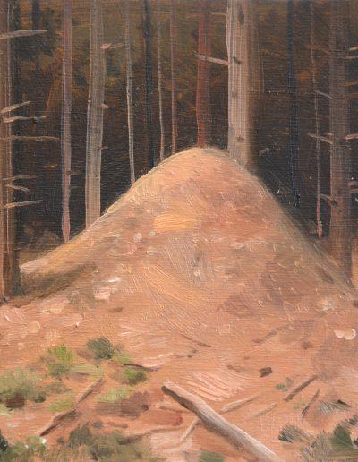 Dégâts de forêt n°3, 2013.