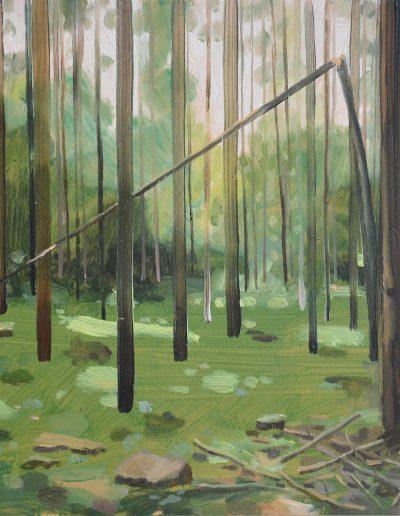 Dégâts de forêt n°6, 2014.
