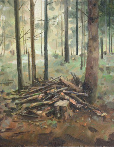 Dégâts de forêt n°5, 2013.