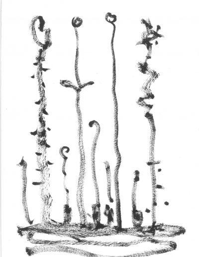 Plantes, 2016.