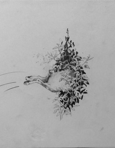 Les animaux de distance, 2015.